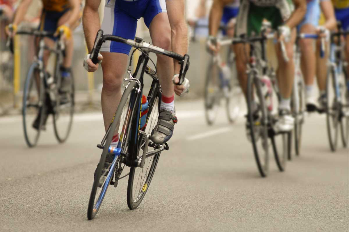 Bike Racers 1100 wide.jpg